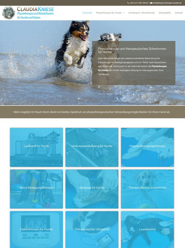 Homepage erstellt Physiotherapie Hunde