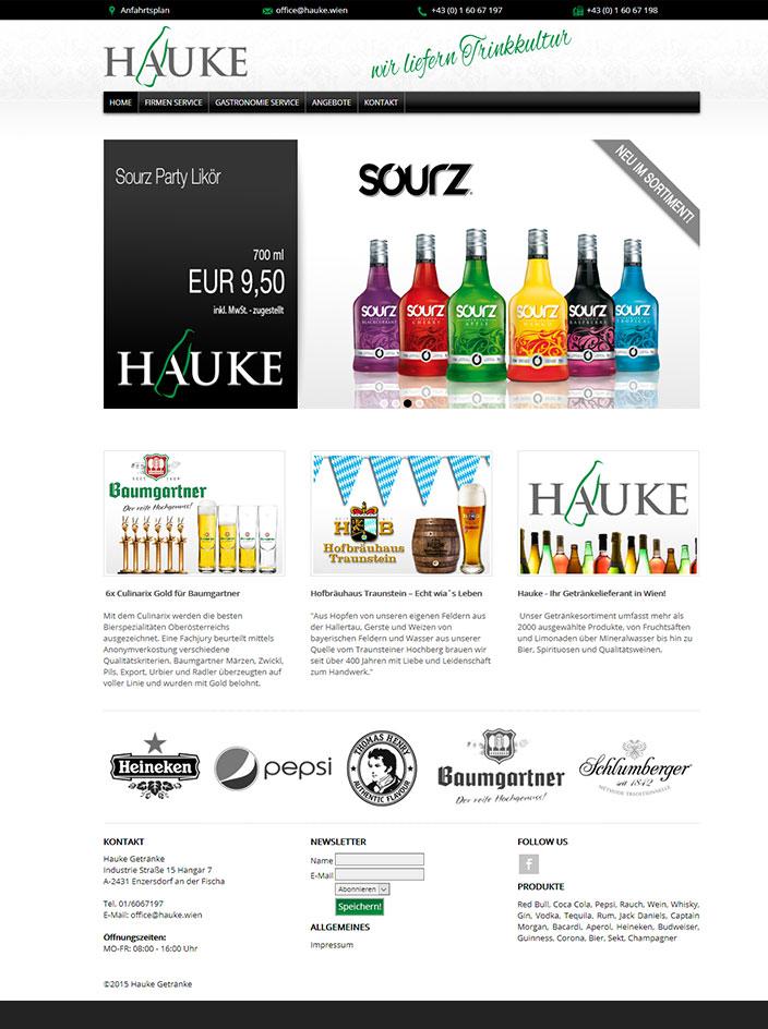 Webseite erstellt für Hauke Wien